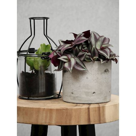 Duif Wholesale - Metal - Planter Carmita1 Black - Black