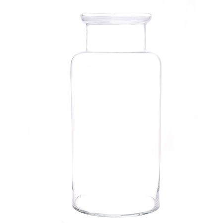 Basic Collection - Glass - Vase Bose5 Clear - Clear